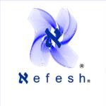 Inicio de colaboración con Nefesh en la realización de cursos